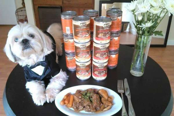 What are the best dog food brands?